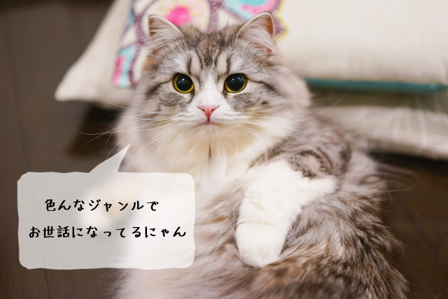 猫関連の仕事は何があるのか、どんなジャンルか